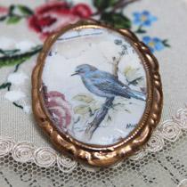 Blue bird cameo brooch
