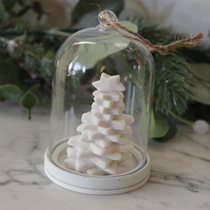 Glass cloche with Christmas tree